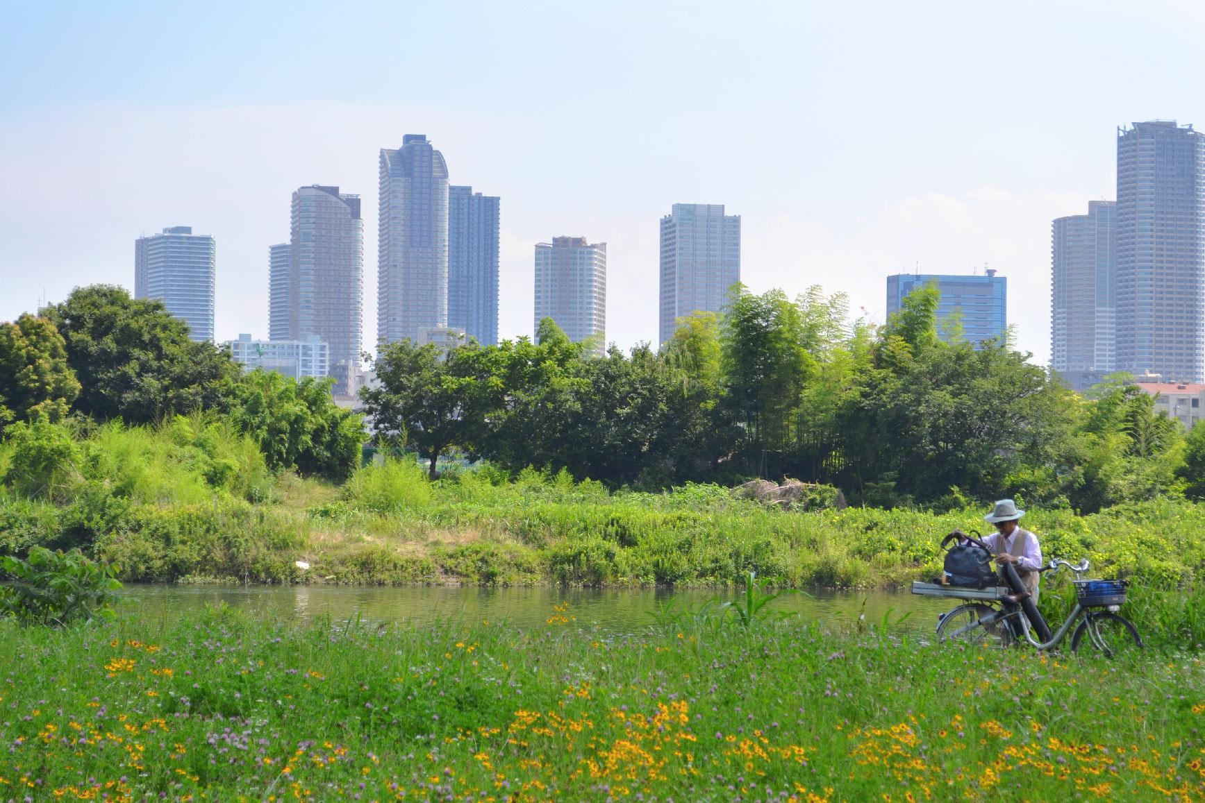 Un cycliste au bord de la rivière Tamagawa