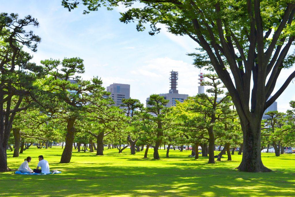 Jardin proche du Palais Impérial de Tokyo