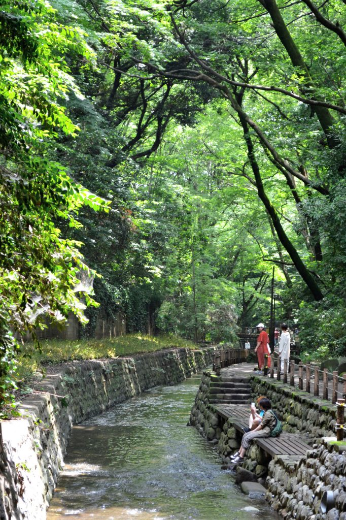 La vallée de Todoroki
