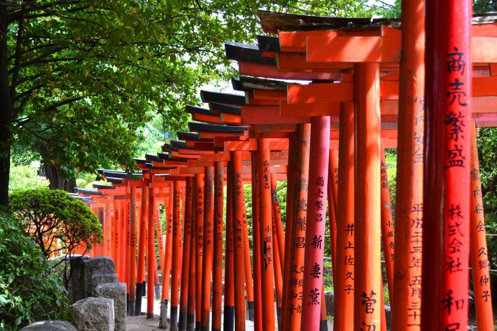 Allée de Torii au temple Nezu