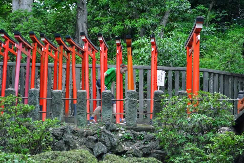 Vincent dans l'allée de torii du Nezu-jinja