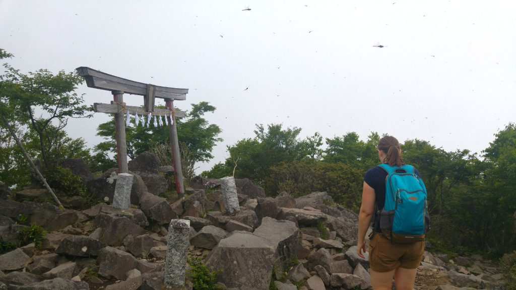 Claire contemple le tori du mont Kurobi en compagnie de (quelques) libellules