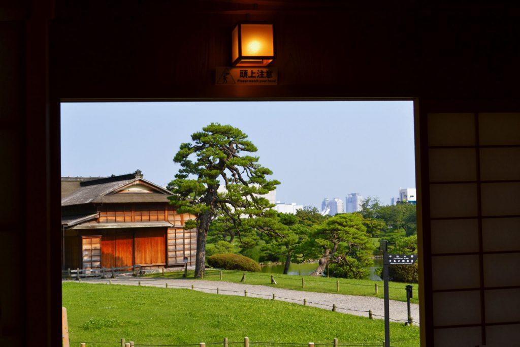 Vue du jardin Hamarikyu depuis son Okiya