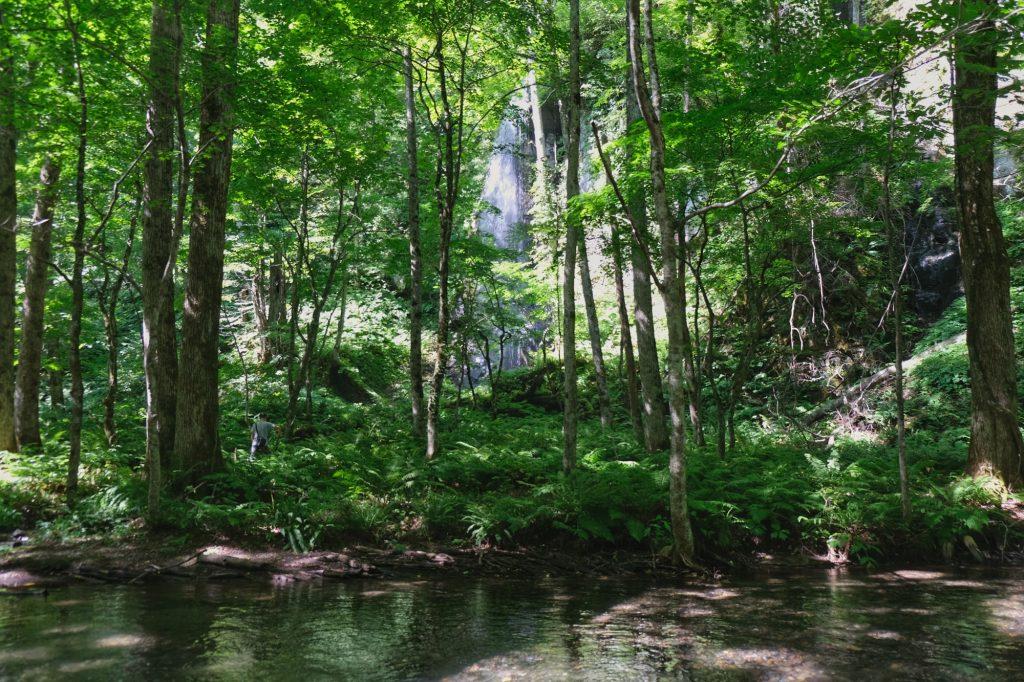 Une cascade se jettant dans la rivière Oirase