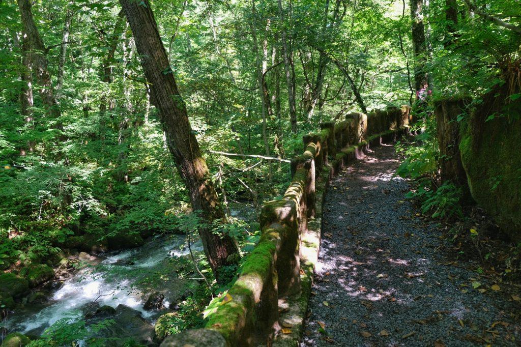 Chemin surplombant la rivière Oirase
