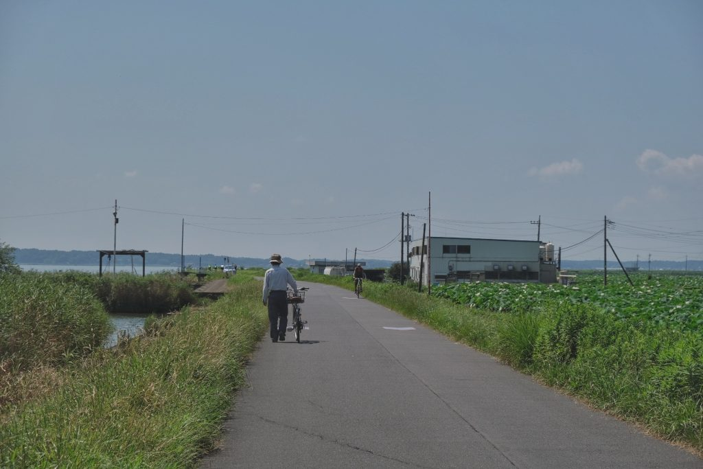 Des cyclistes longent le lac Kasumigaura