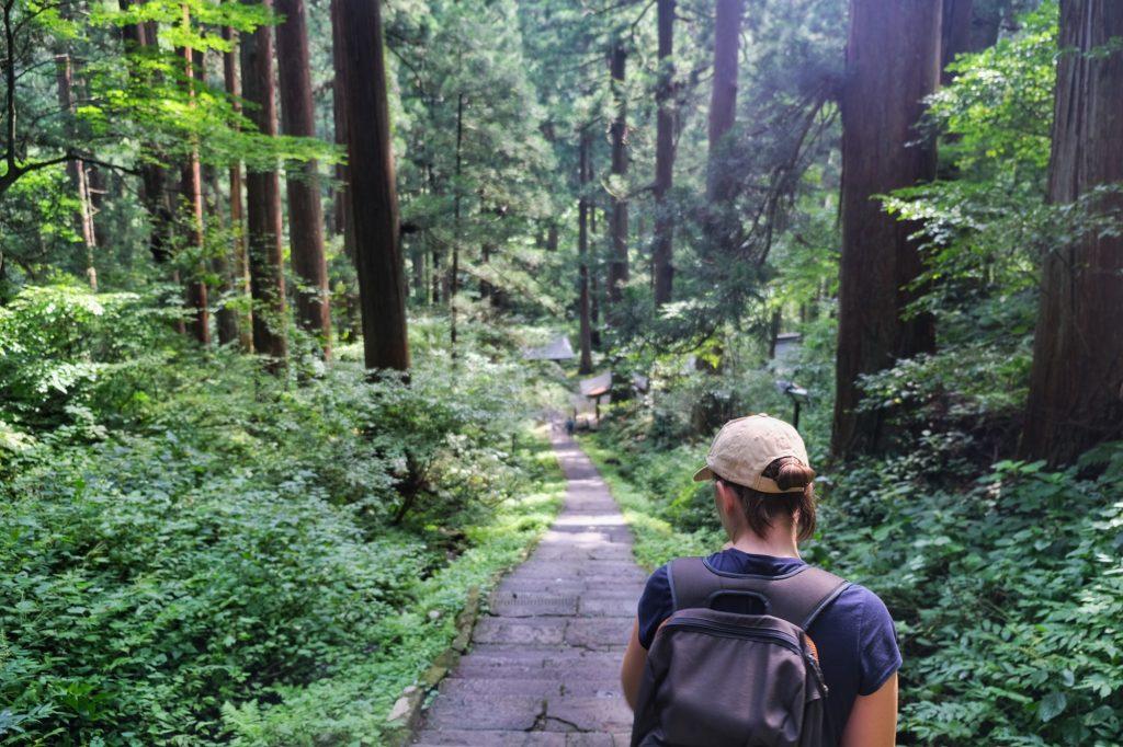 Le début du sentier du Mont Haguro (une descente pour l'illusion avant la montée)