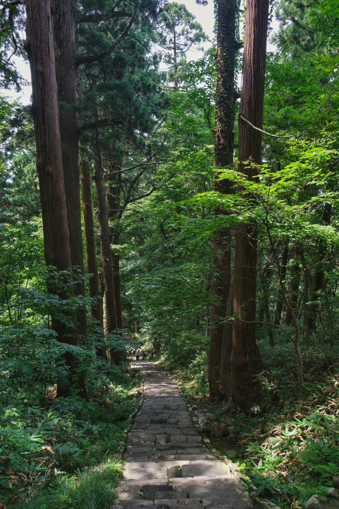 La descente (plus rapide) du Mont Haguro