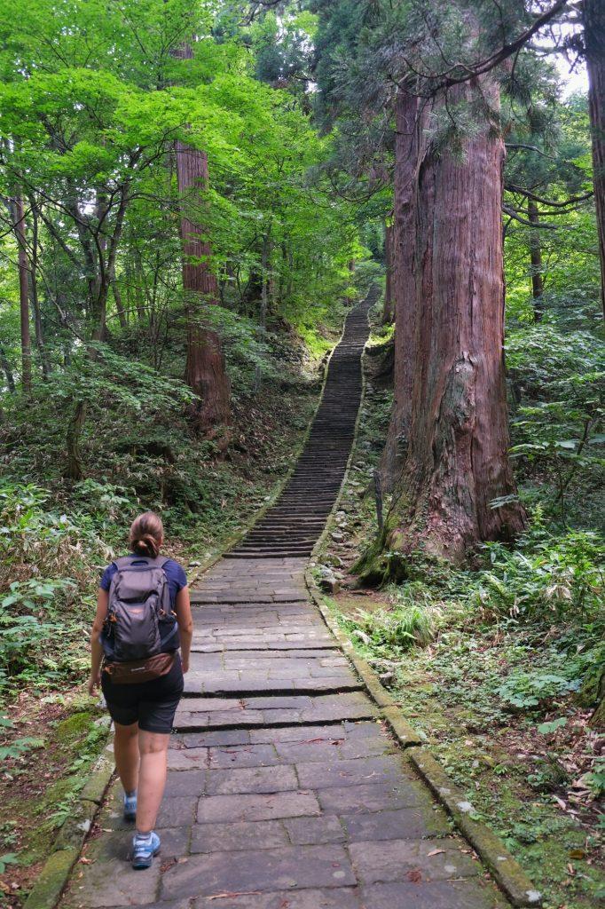 La montée à travers les cèdres sur le Mont Haguro