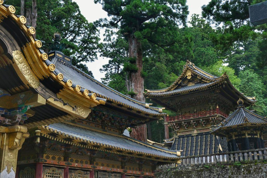 Les temples de Nikko au milieu de la forêt