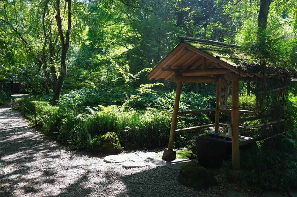 Le jardin de la maison Aoyagi