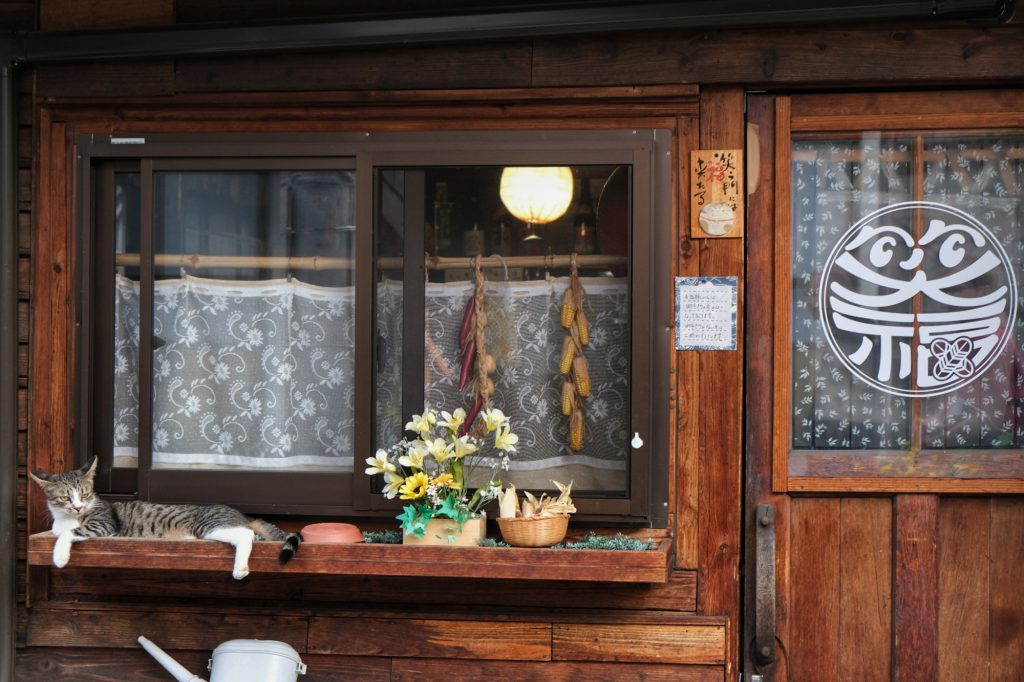 Un chat dans une ruelle de Matsumoto