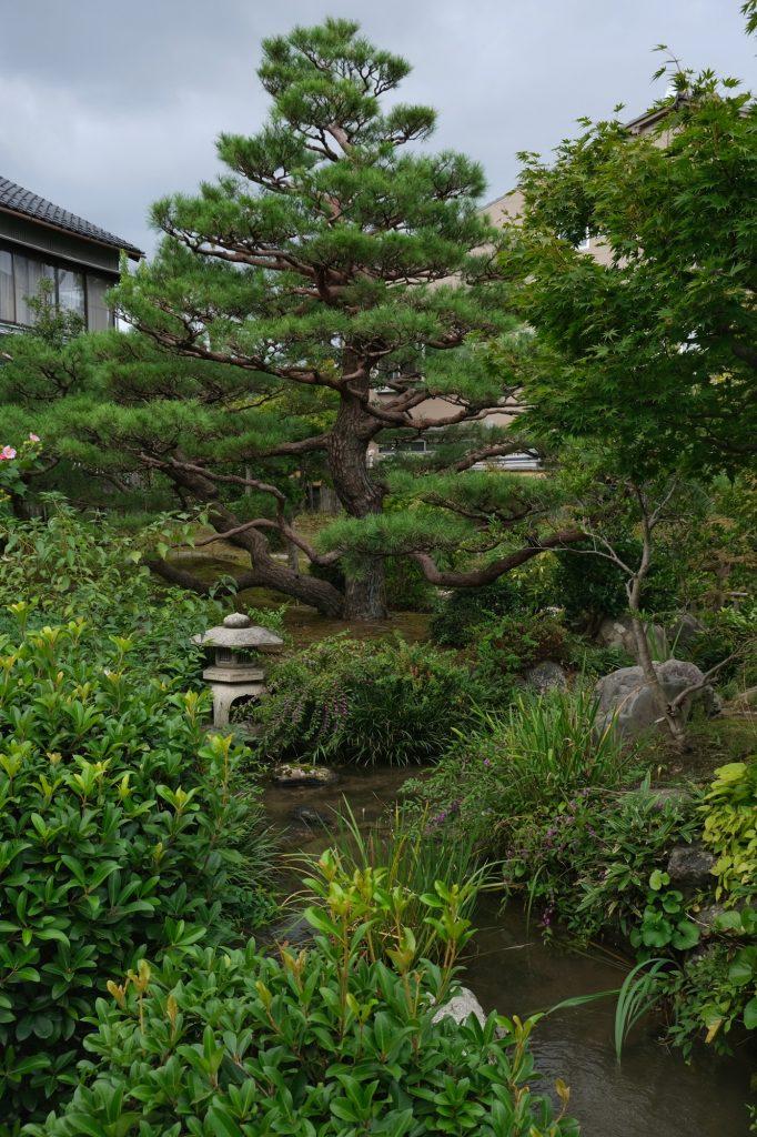 Le jardin d'une maison de samouraï de Kanazawa