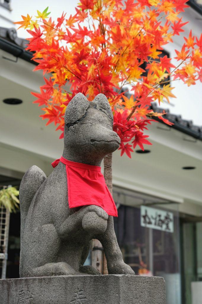 Un renard dans une rue de Matsumoto