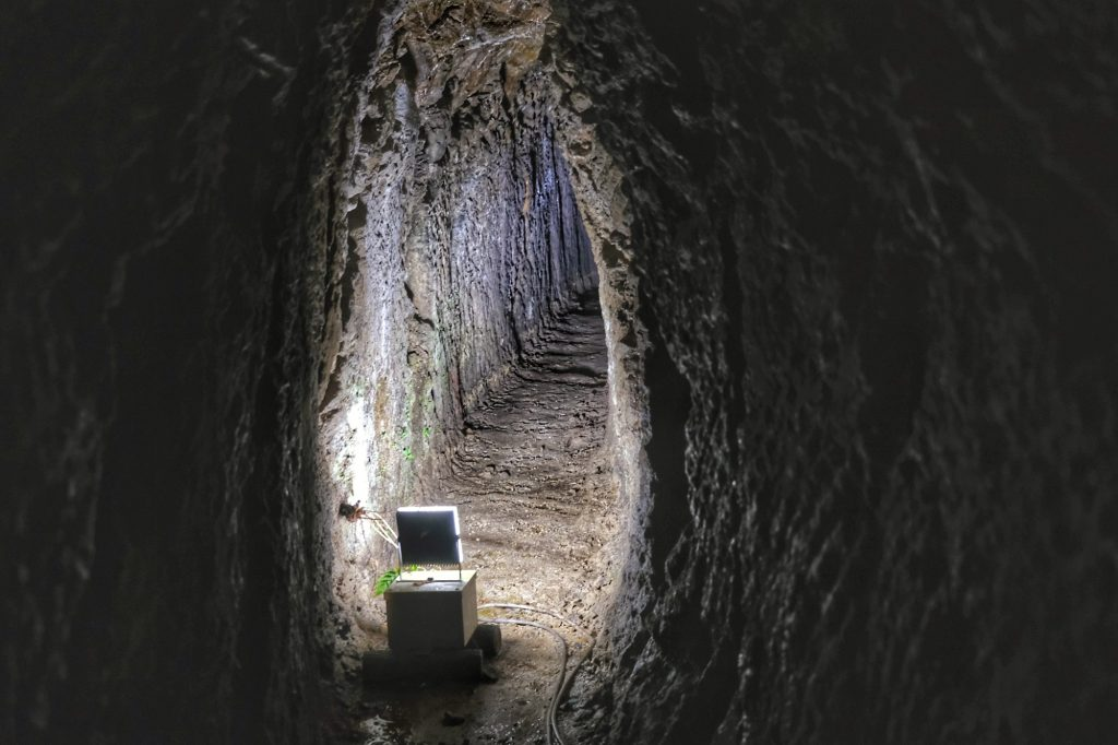 Un ancien tunnel de la mine d'Iwami Ginzan