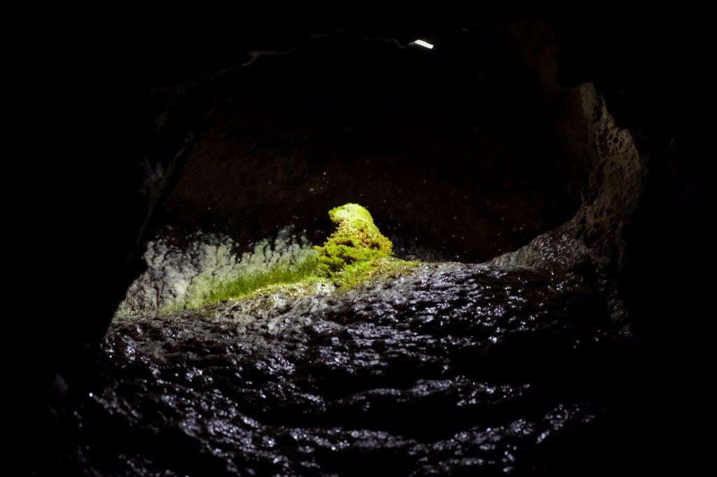 Formation de mousse dans la grotte d'Akiyoshido