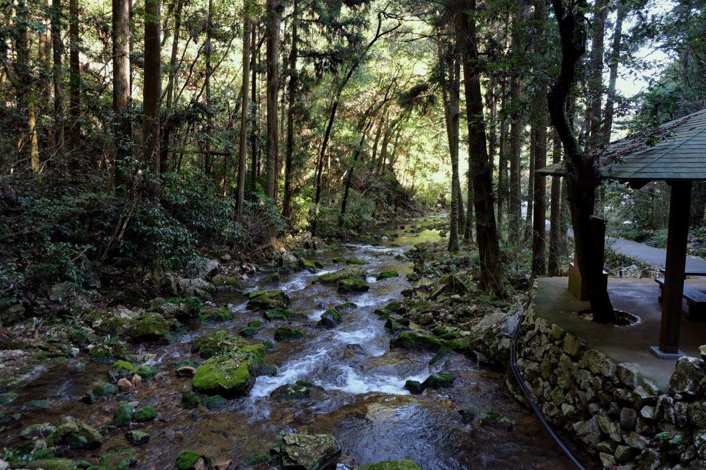 La rivière sortante de la grotte d'Akiyoshido