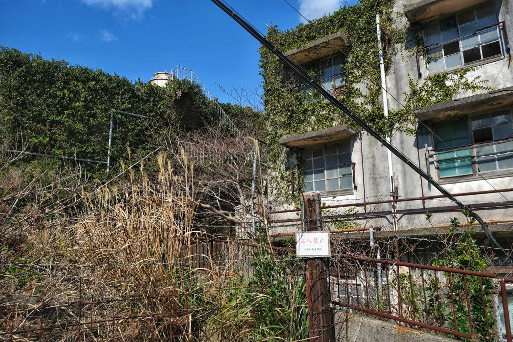 Des bâtiments à moitié recouvert par la végétation sur Ikeshima