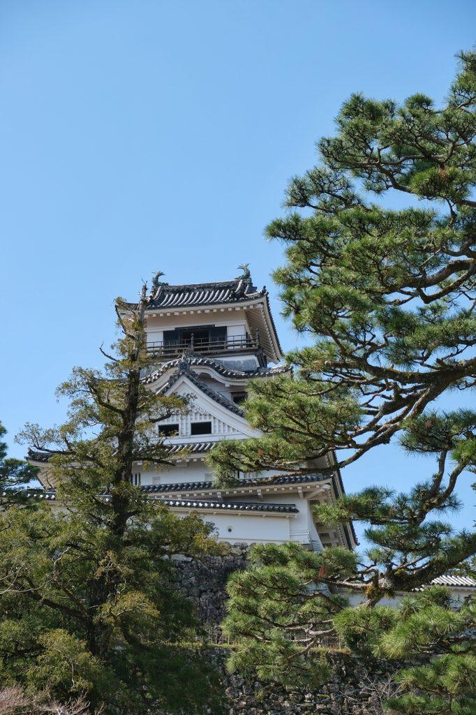 Le château de Kochi vu du dessous