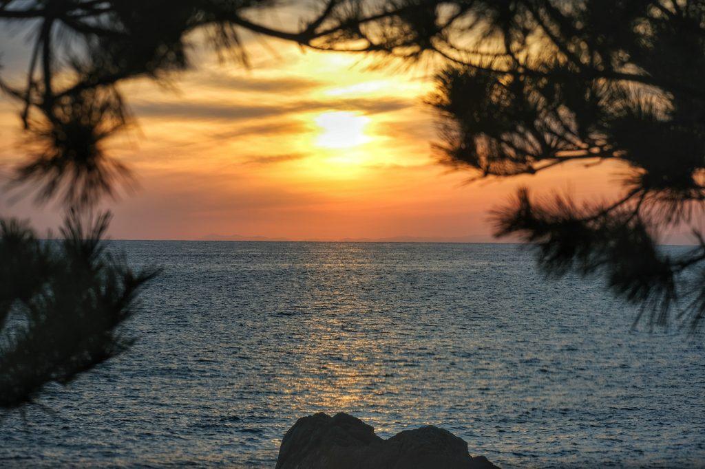 Coucher de soleil entre les branches près du cap Muroto