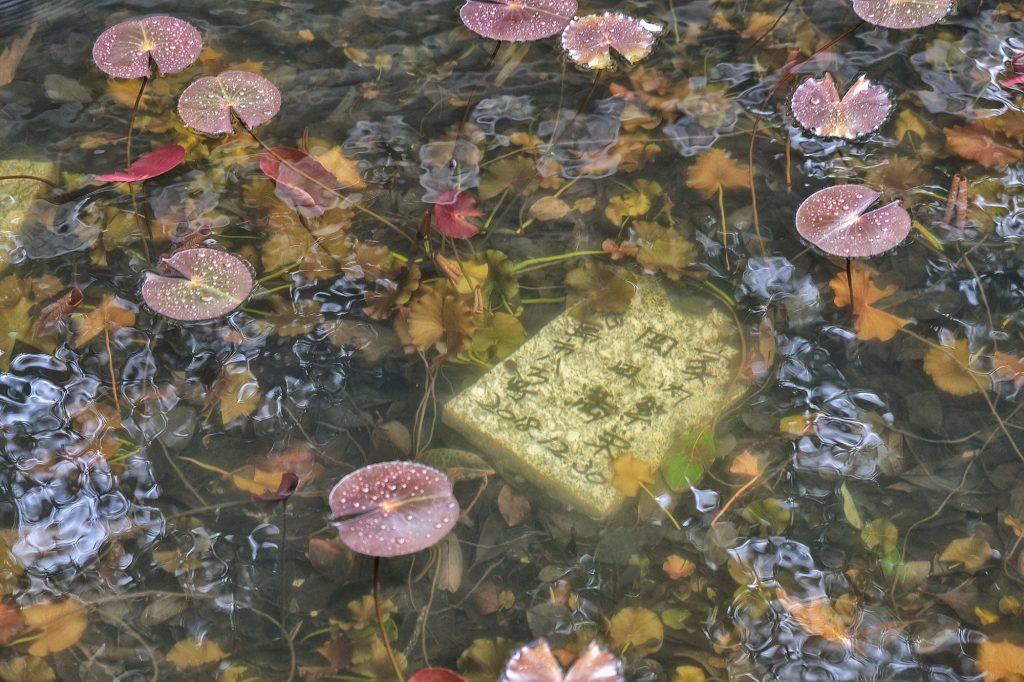 Inscription sur une pierre au fond de l'eau à l'entrée du Kongofukuji