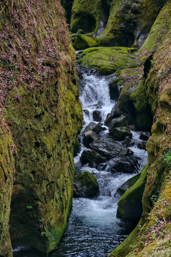 La rivière encaissée des gorges de Takachiho