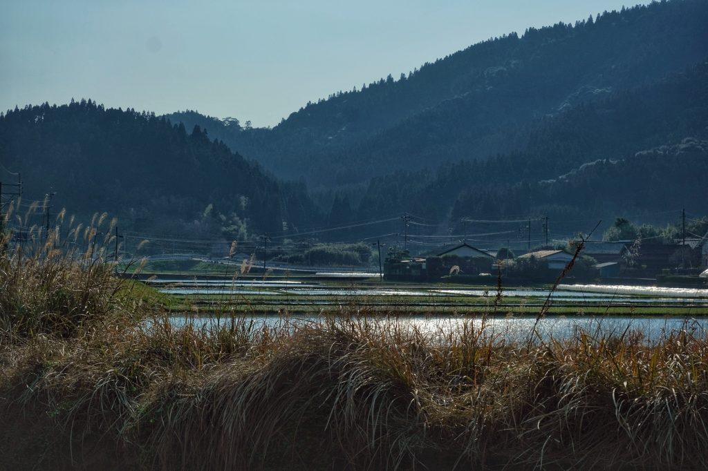 Une rizière dans la préfecture de Miyazaki