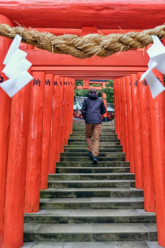 Les toriis du sanctuaire Udo-inari