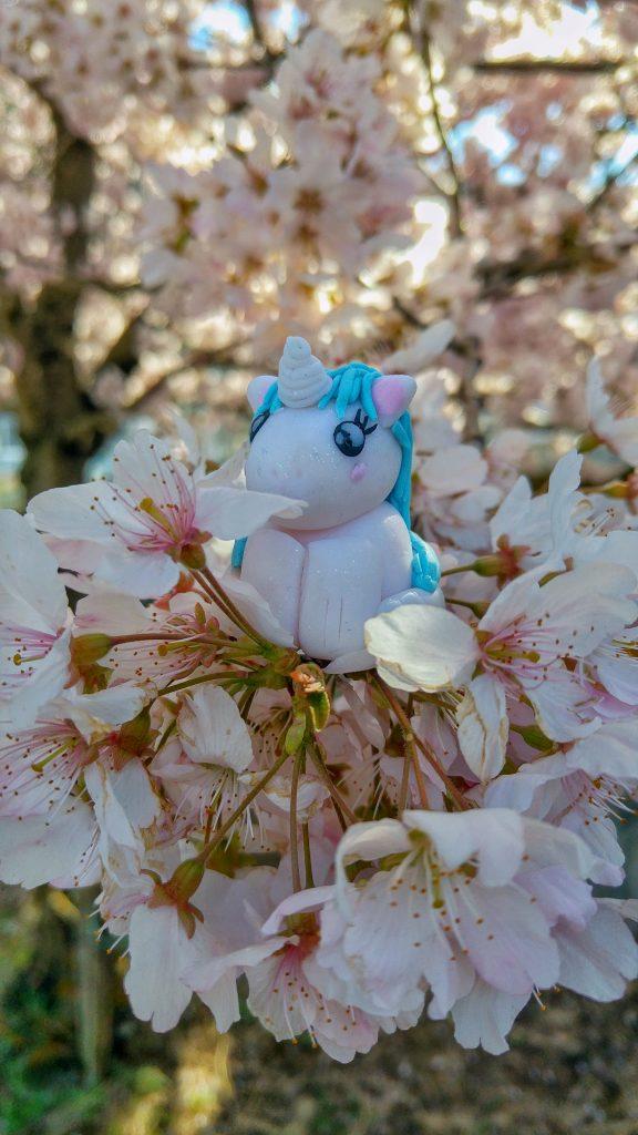 Stélie dans les fleurs de cerisier