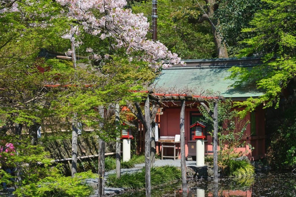 Le sanctuaire Mizuya de Fujinomiya