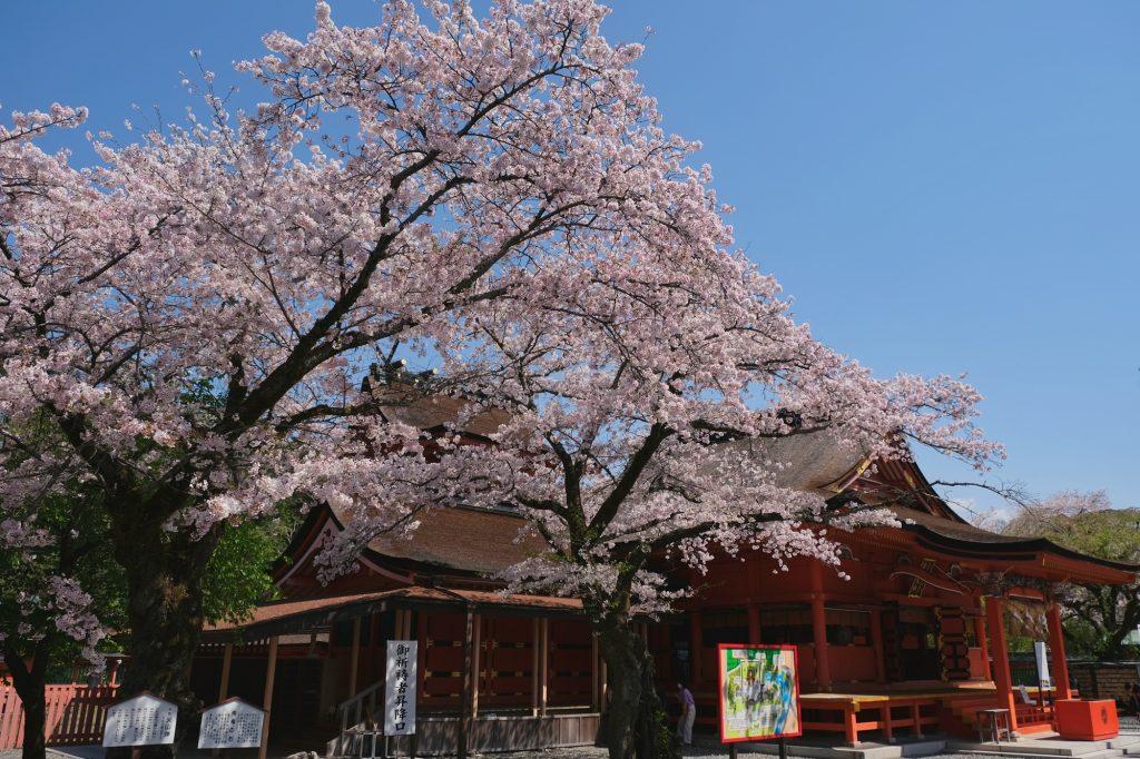 Le sanctuaire Fujisan Hongu Sengen Taisha de Fujinomiya