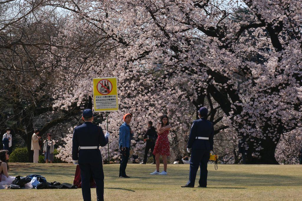 Les gardes du parc en discussion avec des jeunes en séance photo