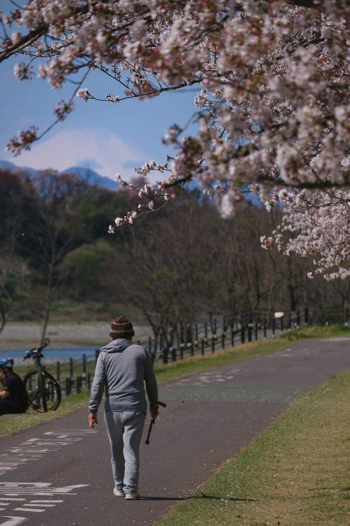 Le Mont Fuji vu depuis un parc de Tokyo le long de la rivière Tamagawa