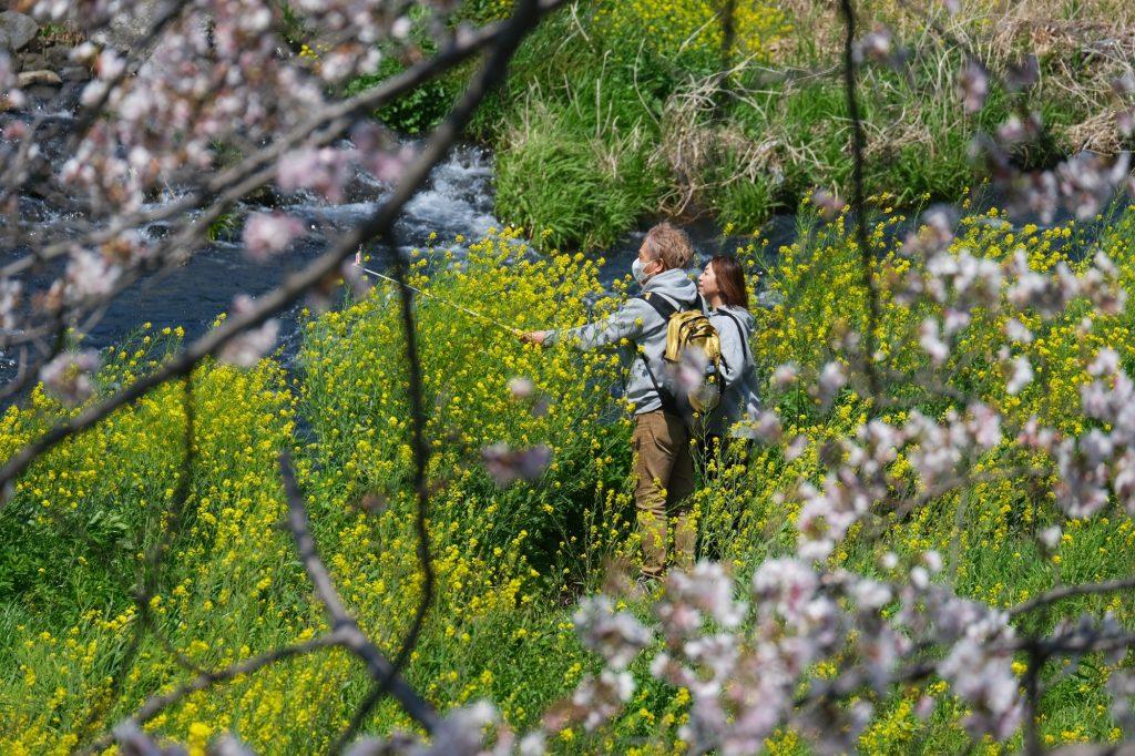 Selfie devant les fleurs de la rivière Urui à Fuji