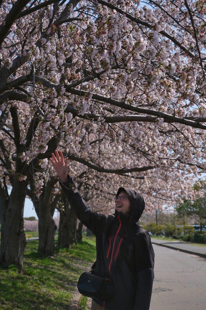 Vincent cherche à atteindre les fleurs de cerisiers